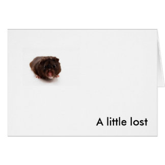 """A Little Lost"" Note Card"