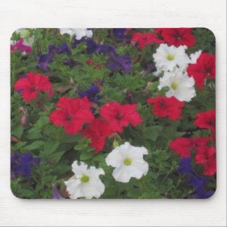 A little Red White and Blue Mouse Pad