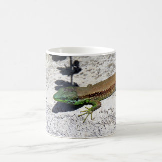 A lizard in the sun coffee mug