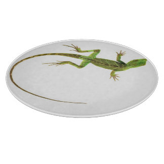 A lizard on pure white ground cutting board