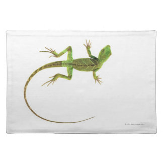 A lizard on pure white ground placemats