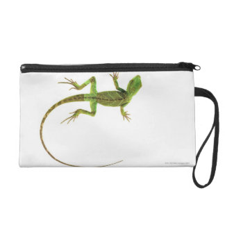 A lizard on pure white ground wristlet