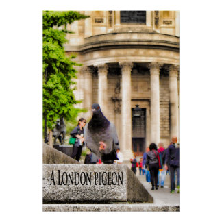 A London Pigeon Poster