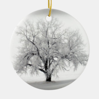 A lone Frostry Tree in the North Dakota Prairie Christmas Ornament