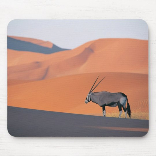 A lone oryx antelope. mouse pad