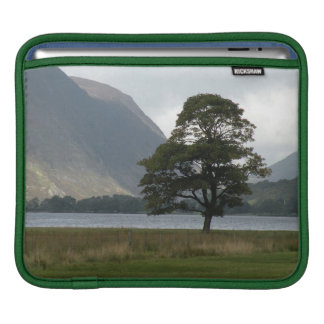 A lone tree by the lake iPad sleeve