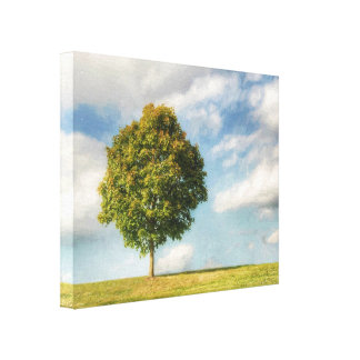 A Lone Tree Full of Life with a Blue Sky & Clouds Canvas Print