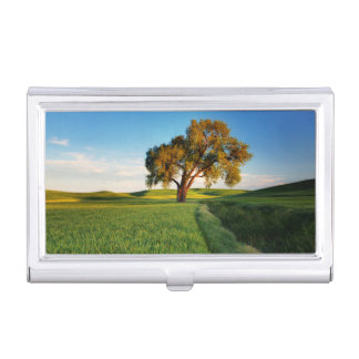 A lone tree surrounded by rolling hills of wheat case for business cards