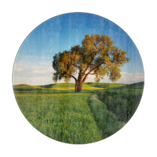 A lone tree surrounded by rolling hills of wheat cutting board
