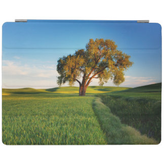 A lone tree surrounded by rolling hills of wheat iPad cover
