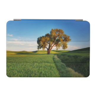 A lone tree surrounded by rolling hills of wheat iPad mini cover