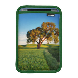 A lone tree surrounded by rolling hills of wheat iPad mini sleeve