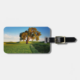 A lone tree surrounded by rolling hills of wheat luggage tag
