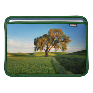 A lone tree surrounded by rolling hills of wheat MacBook sleeve