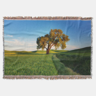 A lone tree surrounded by rolling hills of wheat throw blanket