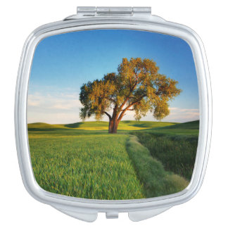 A lone tree surrounded by rolling hills of wheat travel mirror
