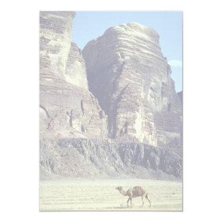 A lonely camel, Wadi Rum Desert, Jordan Desert 13 Cm X 18 Cm Invitation Card