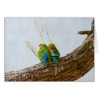 A Lovebird Couple On A Branch Card