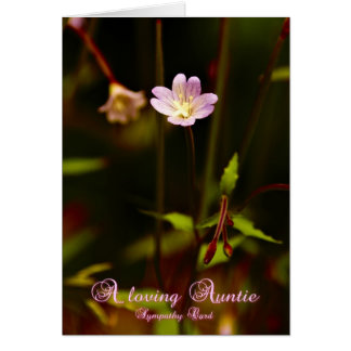 A loving Auntie, sympathy card