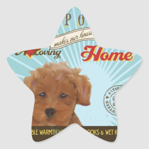 A Loving Toy Poodle Makes Our House Home Star Stickers