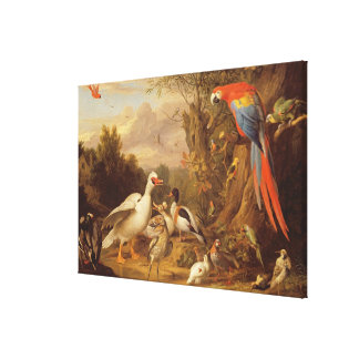 A Macaw, Ducks, Parrots and Other Birds in a Lands Canvas Print