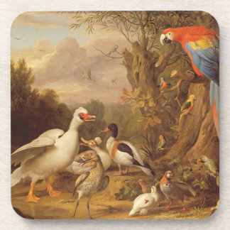 A Macaw, Ducks, Parrots and Other Birds in a Lands Coaster