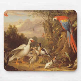 A Macaw, Ducks, Parrots and Other Birds in a Lands Mouse Mat