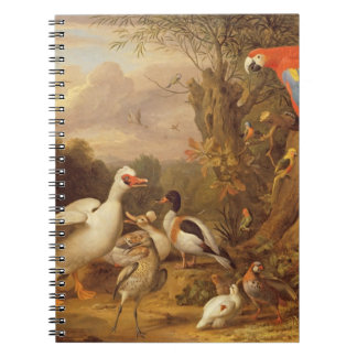 A Macaw, Ducks, Parrots and Other Birds in a Lands Notebook