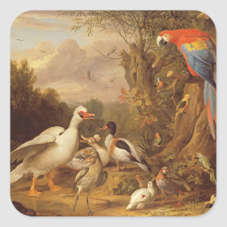 A Macaw, Ducks, Parrots and Other Birds in a Lands Square Sticker