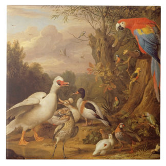 A Macaw, Ducks, Parrots and Other Birds in a Lands Tile