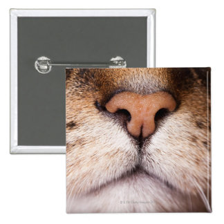A macro image of a cat's nose and mouth. 15 cm square badge