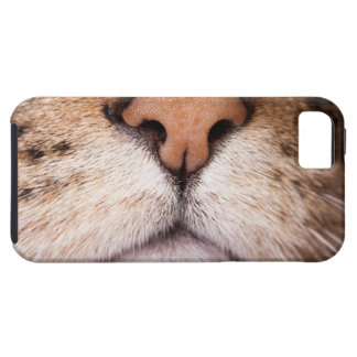 A macro image of a cat's nose and mouth. case for the iPhone 5