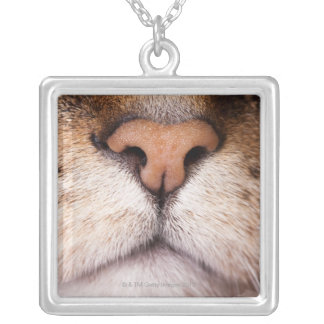 A macro image of a cat's nose and mouth. silver plated necklace