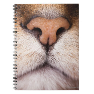 A macro image of a cat's nose and mouth. spiral notebook