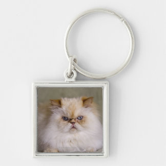 A mad, upset, reclining Flame Point Himalayan Key Ring