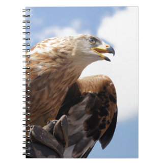 A majestic golden eagle spiral notebook