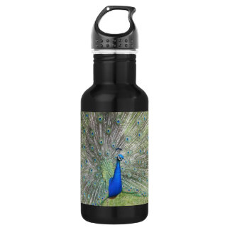 A Male Indian Peacock Fans it's tail Feathers 532 Ml Water Bottle