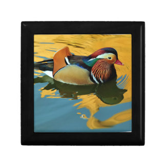 A Male Mandarin Duck Aix Galericulata At Sunset Gift Boxes