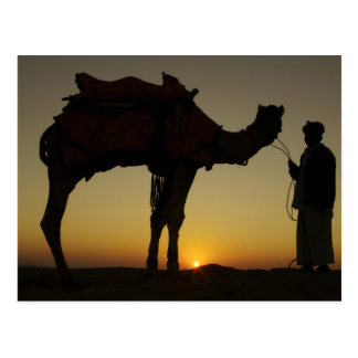 a man and his camel Silhouetted at sunset on the Postcard
