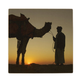a man and his camel Silhouetted at sunset on the Wood Coaster
