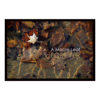 A maple leaf forever poster