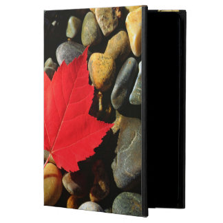 A Maple leaf on a Rock Background Cover For iPad Air