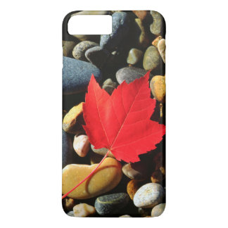 A Maple leaf on a Rock Background iPhone 8 Plus/7 Plus Case