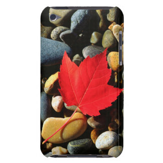 A Maple leaf on a Rock Background iPod Touch Cases