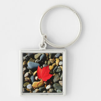 A Maple leaf on a Rock Background Key Ring
