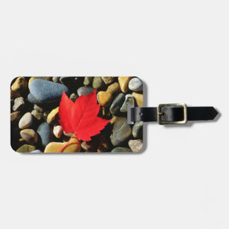 A Maple leaf on a Rock Background Luggage Tag
