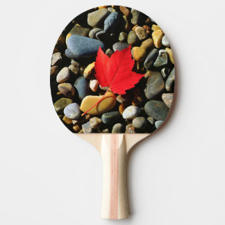 A Maple leaf on a Rock Background Ping Pong Paddle