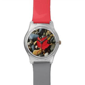 A Maple leaf on a Rock Background Watch