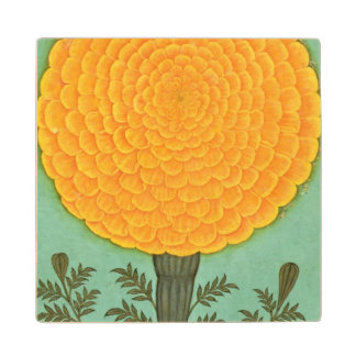 A Marigold, from the Small Clive Album (w/c on pap Wood Coaster