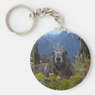 A marmot in Paradise in Mount Rainier National Par Key Chains